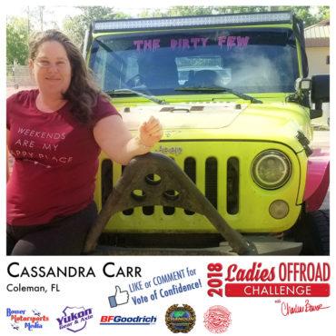 LOC-2018-Entry-Cassandra-Carr