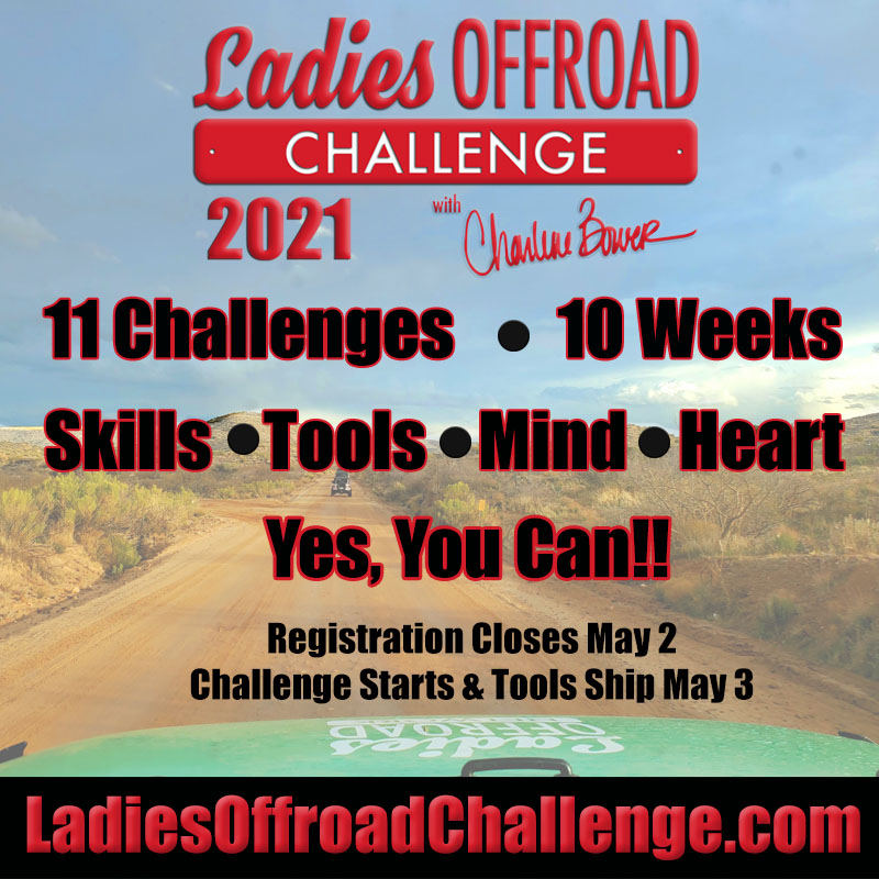 Challenge 2021 800